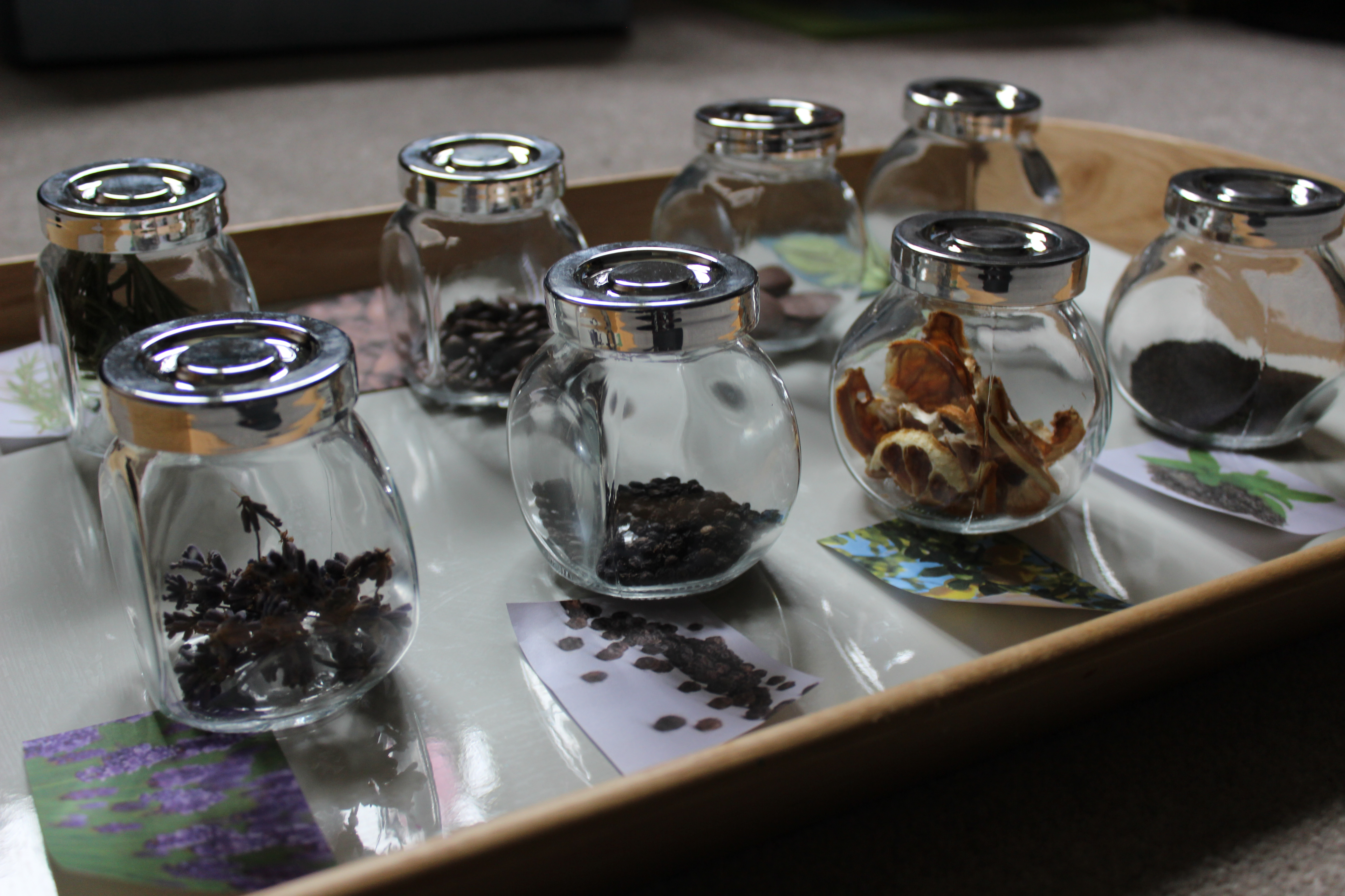 Diy Sensory Smelling Game