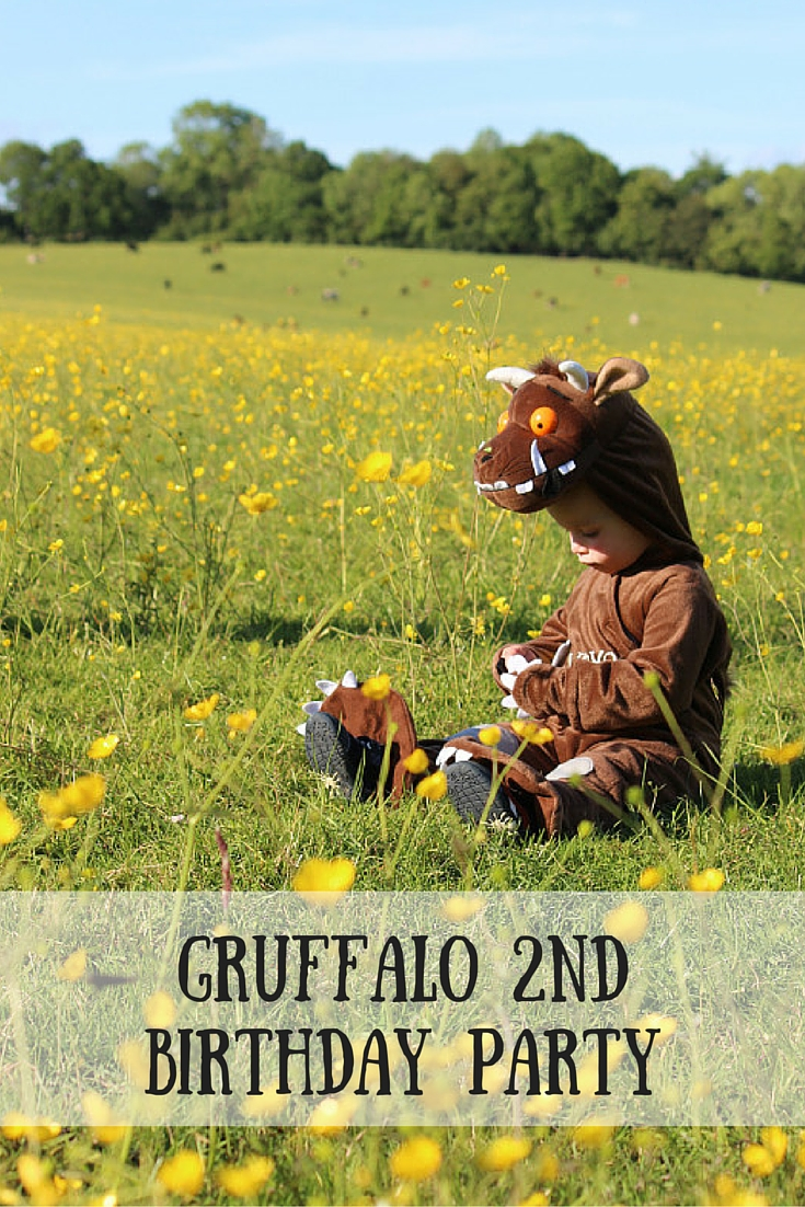 GRUFFALO 3Rd BirthdayParty-2